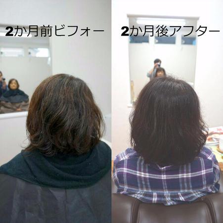 前回の髪質改善から2か月 4